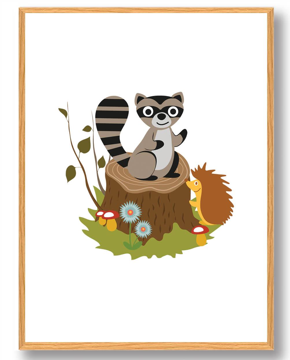 Vaskebjørn - plakat