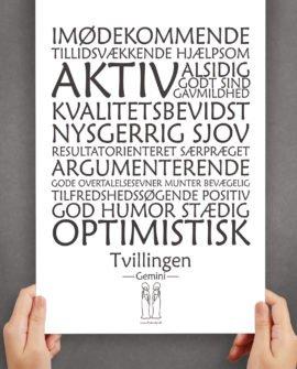 personligt-horoskop-plakat-tvillingen