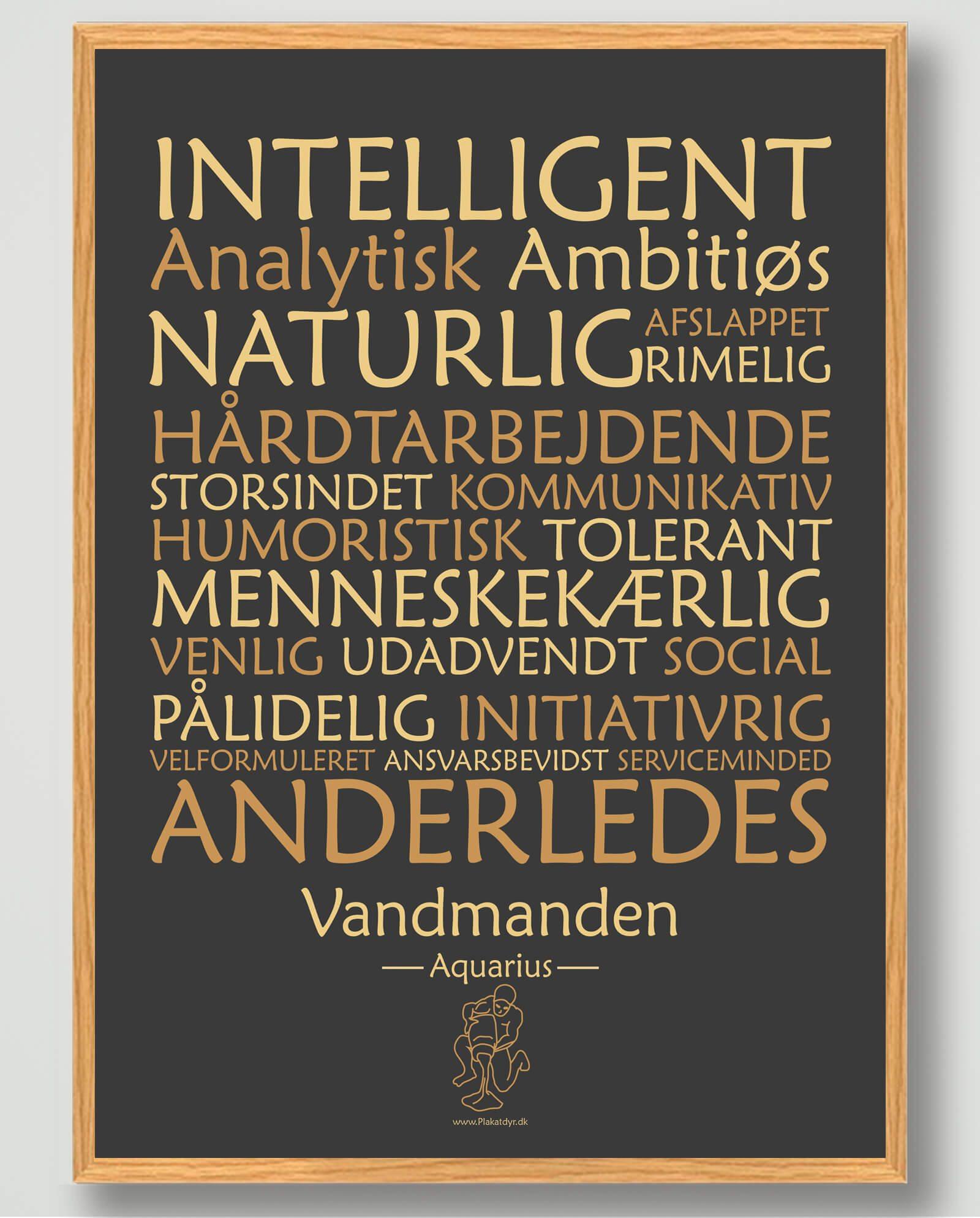 Stjernetegn vandmanden (sort) - plakat