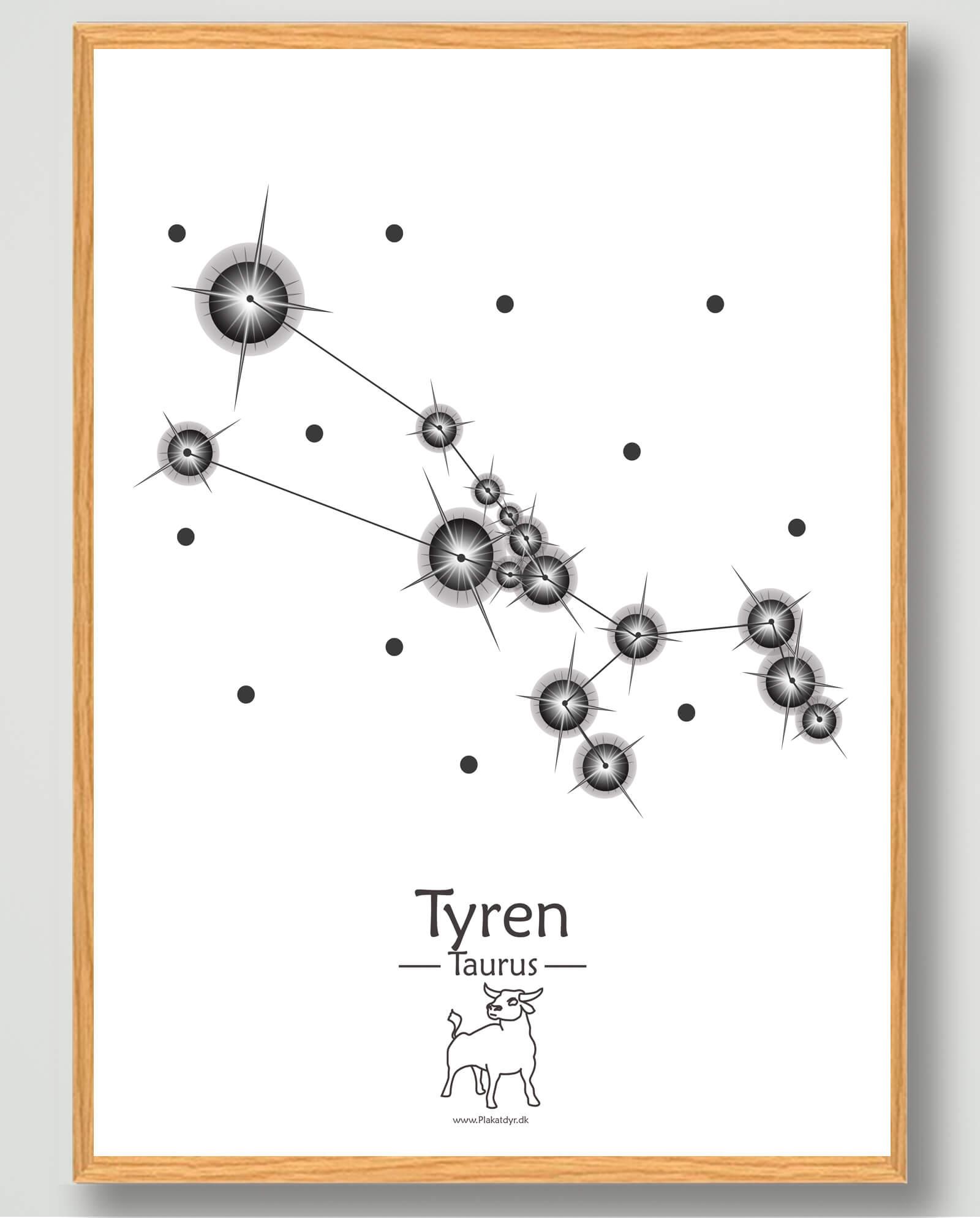 Stjernebillede tyren (hvid) - plakat