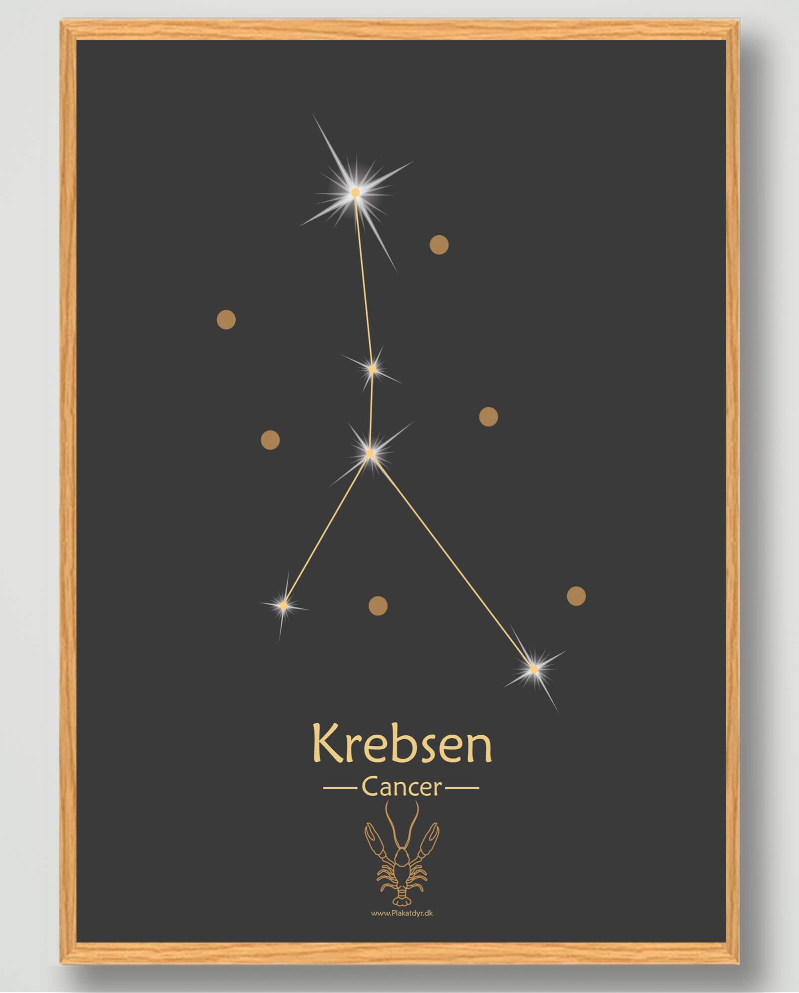 Stjernebillede krebsen (sort) - plakat