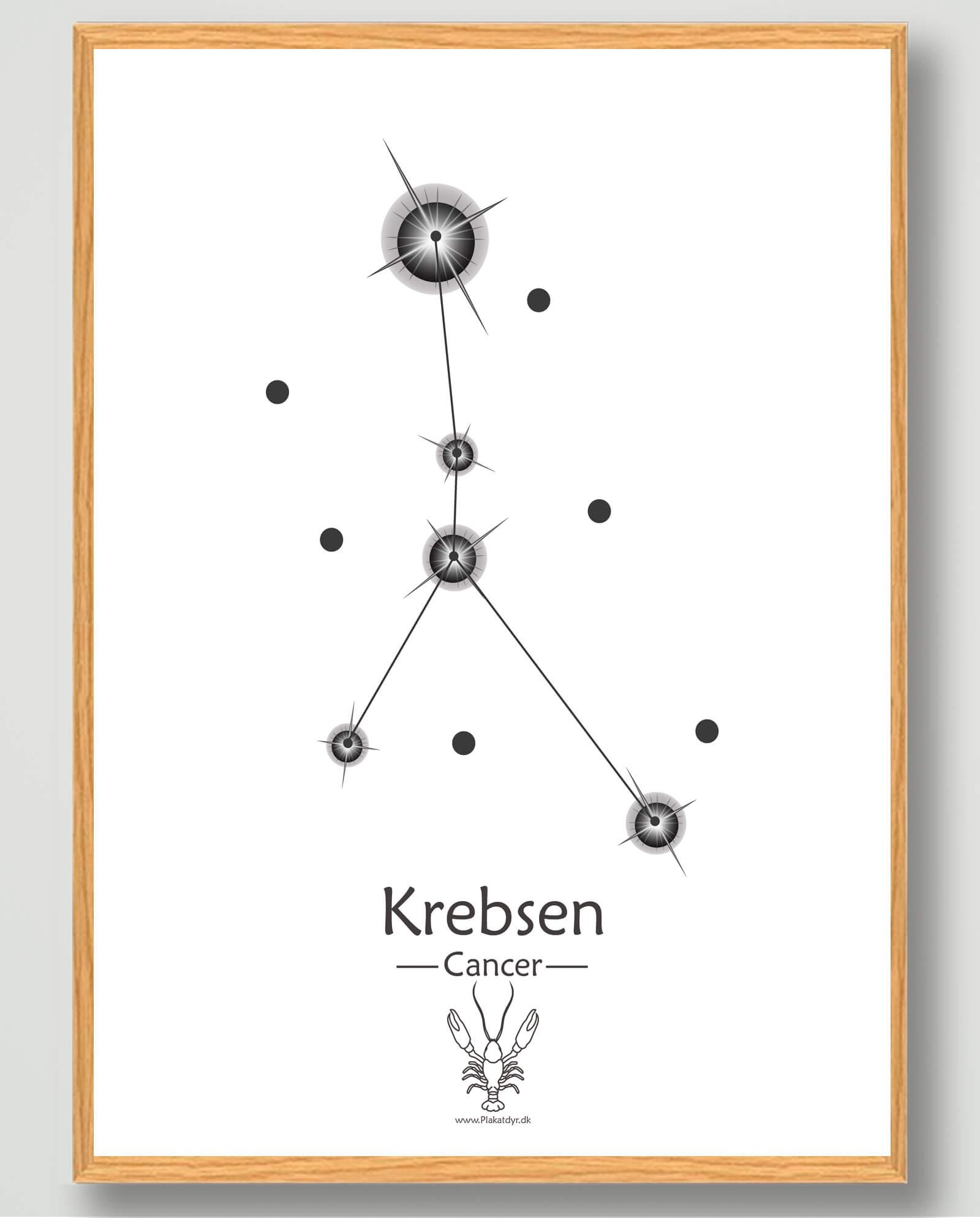 Stjernebillede krebsen (hvid) - plakat