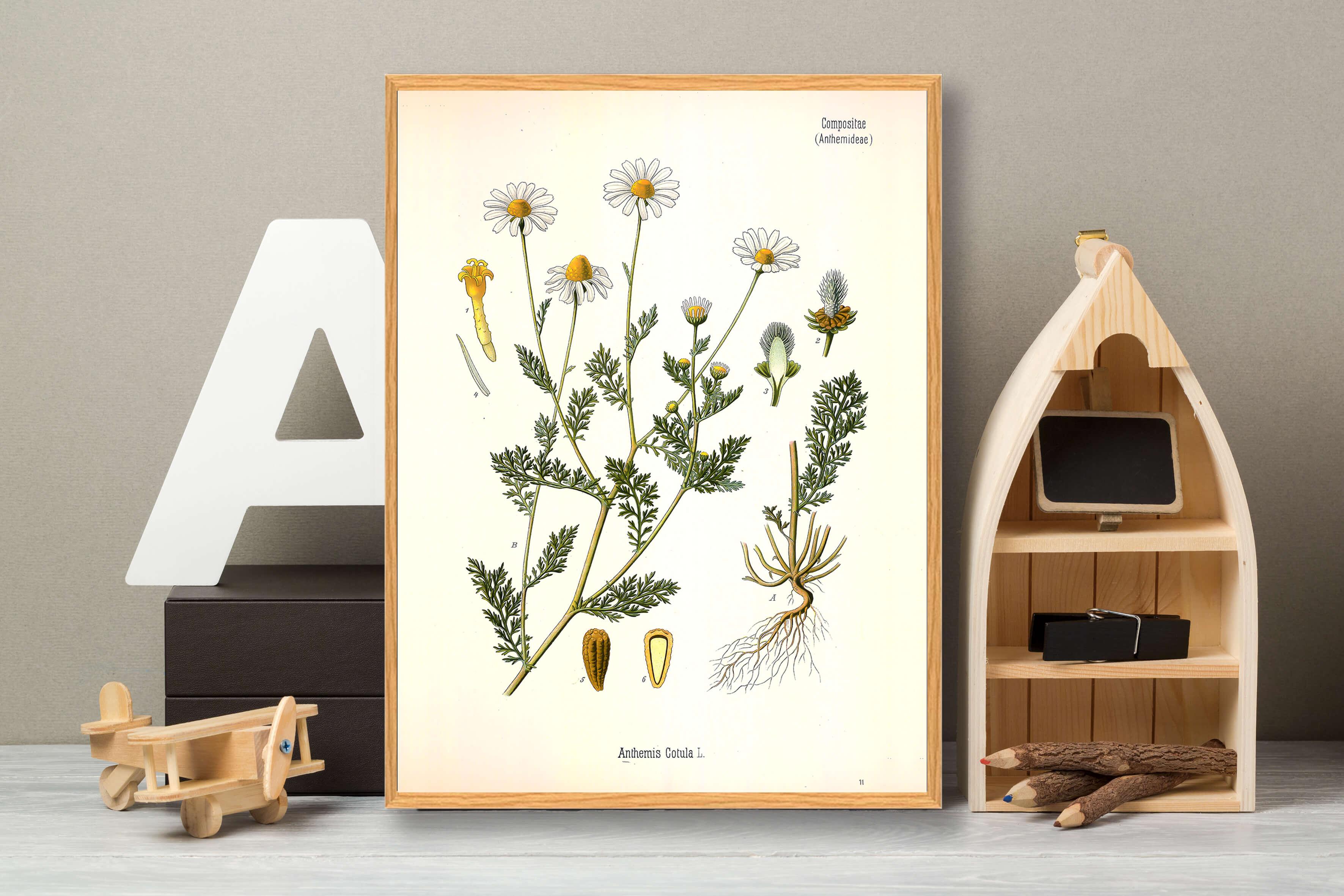 sommerhus-plakat-3