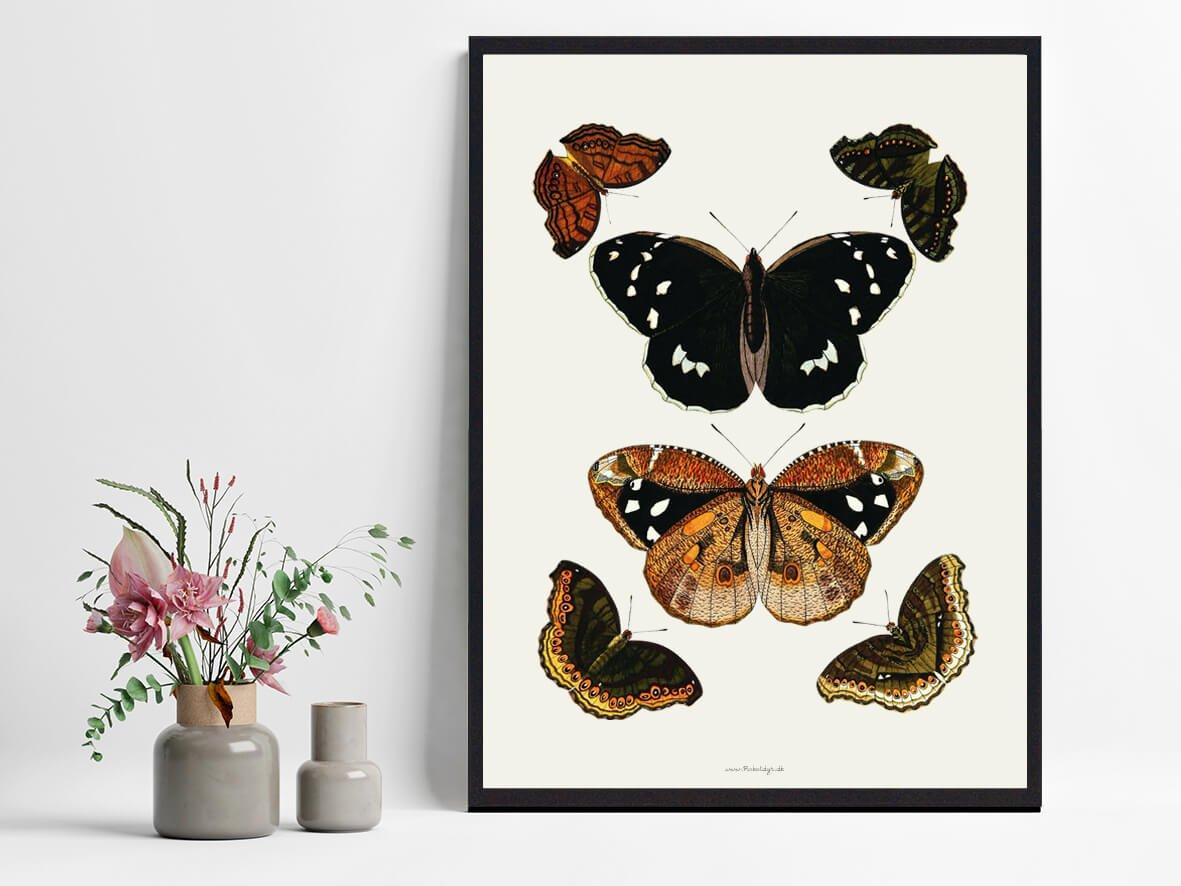 Boligplakat-sommerfugle-2