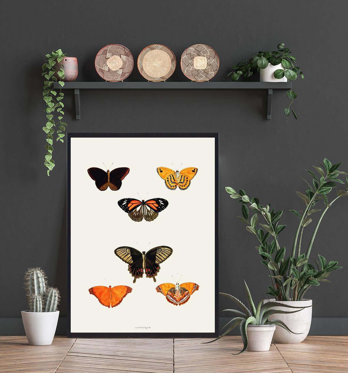 plakat-med-sommerfugle-bolig-3
