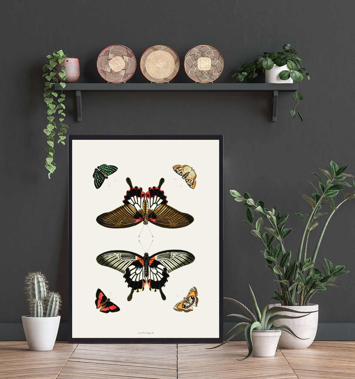 plakat-med-sommerfugle-boligindretning-3