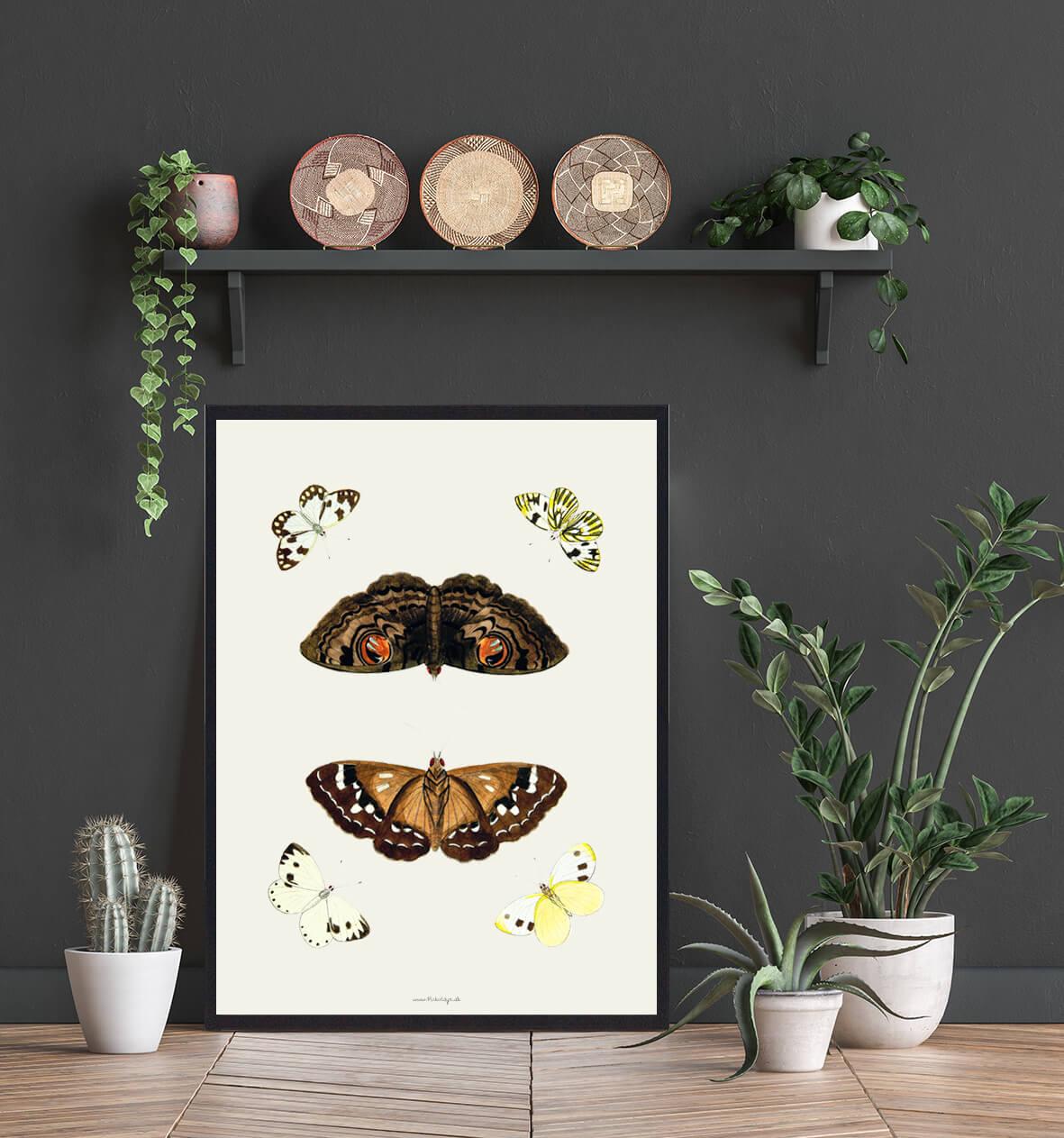 plakat-sommerfugle-bolig-3