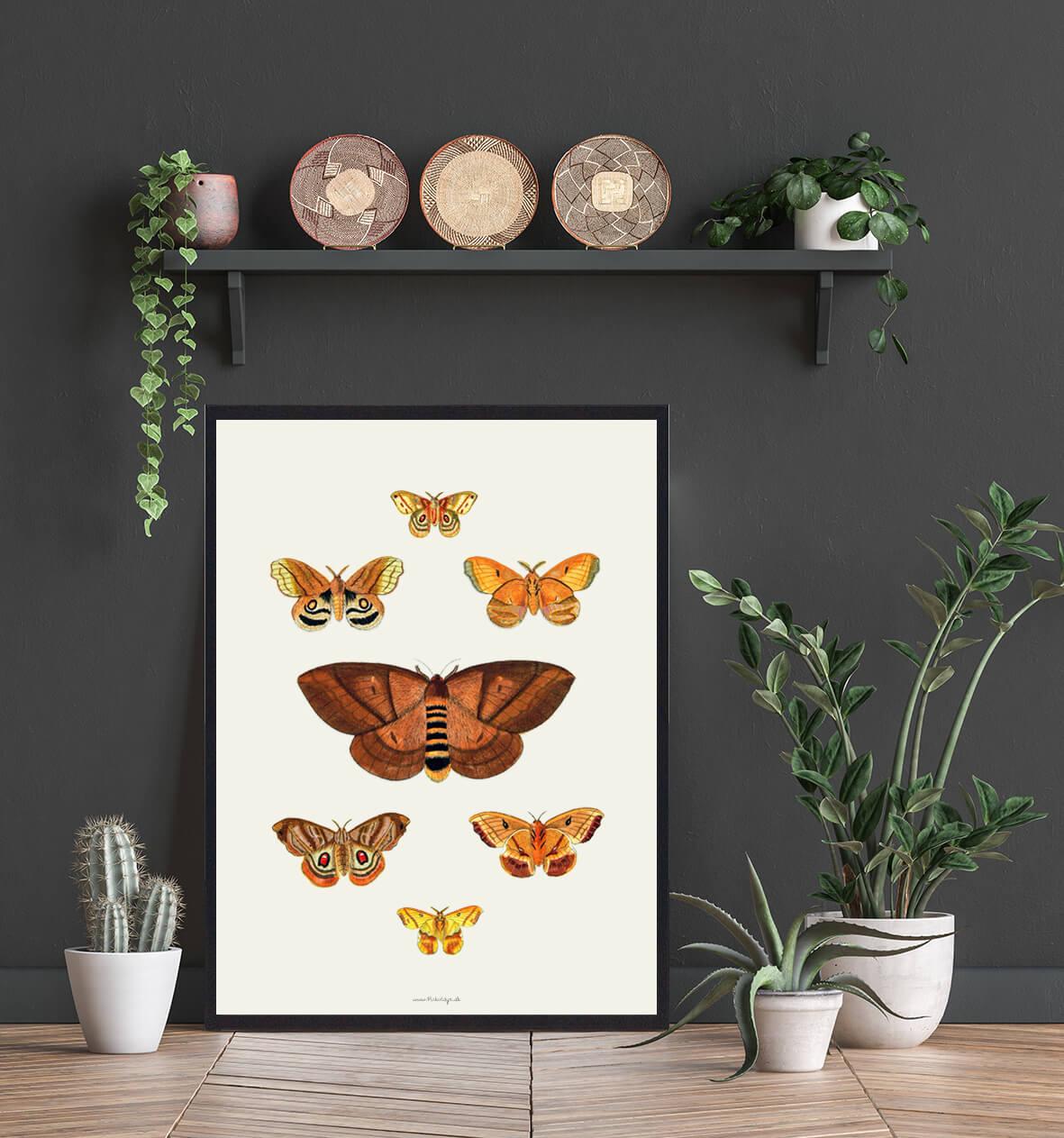 plakat-sommerfugle-boligen-3