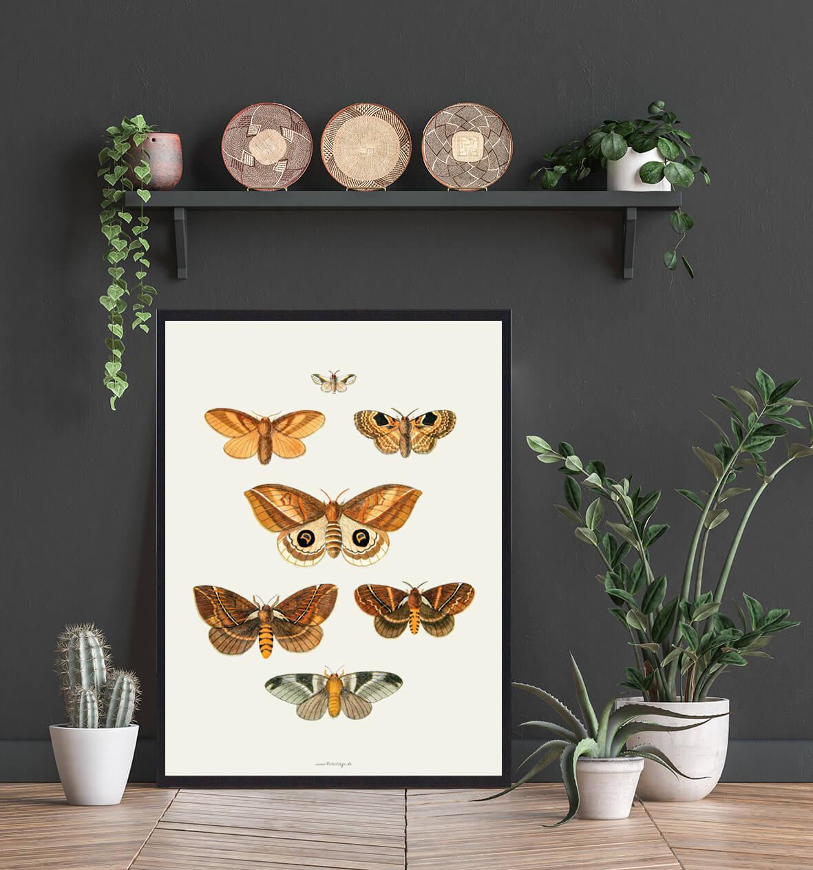 plakat-sommerfugle-boligindretning-3