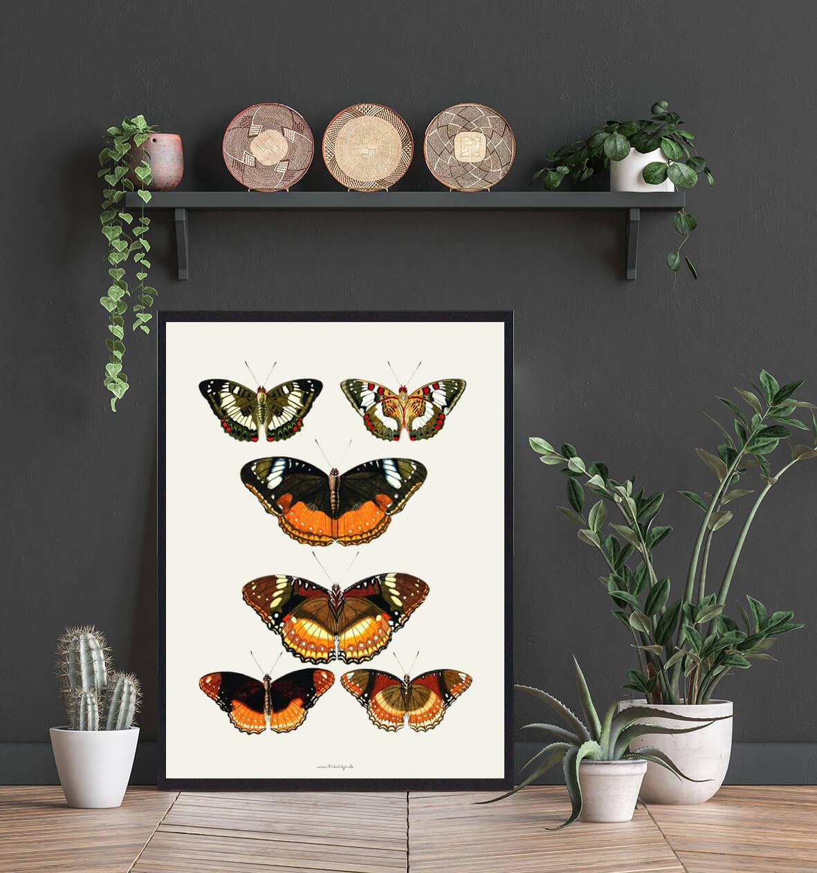 plakat-sommerfugle-indretning-3