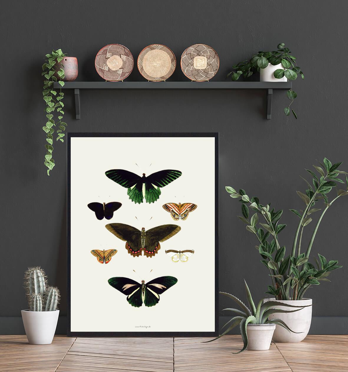 sommerfugle-plakat-boligindretning-3