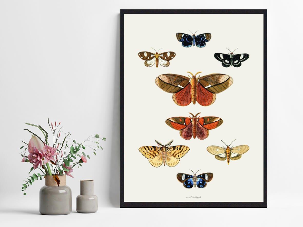 sommerfugle-plakater-boligen-2