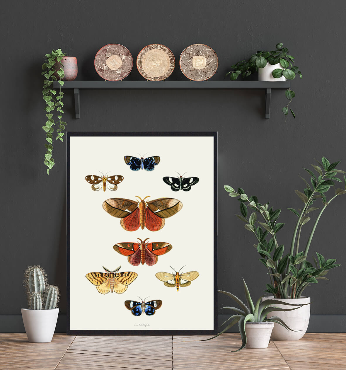 sommerfugle-plakater-boligen-3