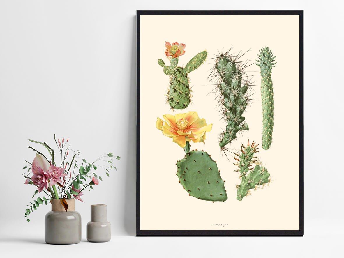 Bolig-plakat-kaktus-1