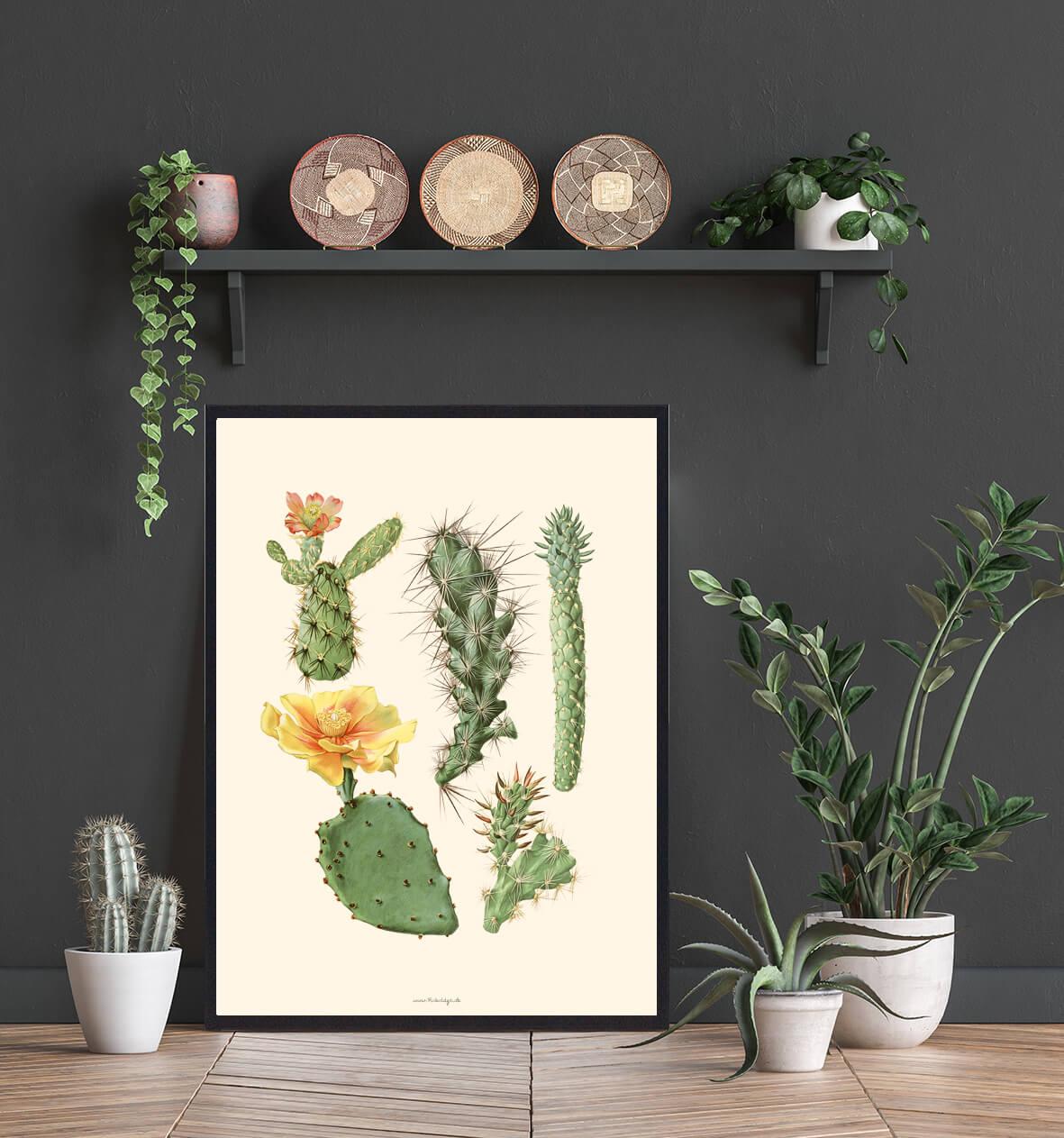 Bolig-plakat-kaktus-3