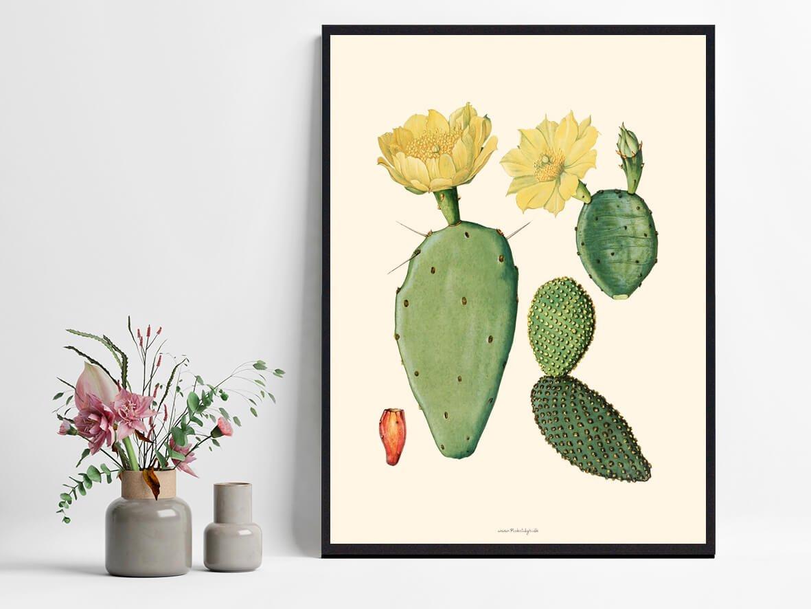 Boligenplakat- Kaktus-1