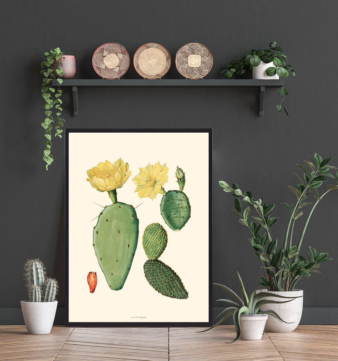 Boligenplakat- Kaktus-3