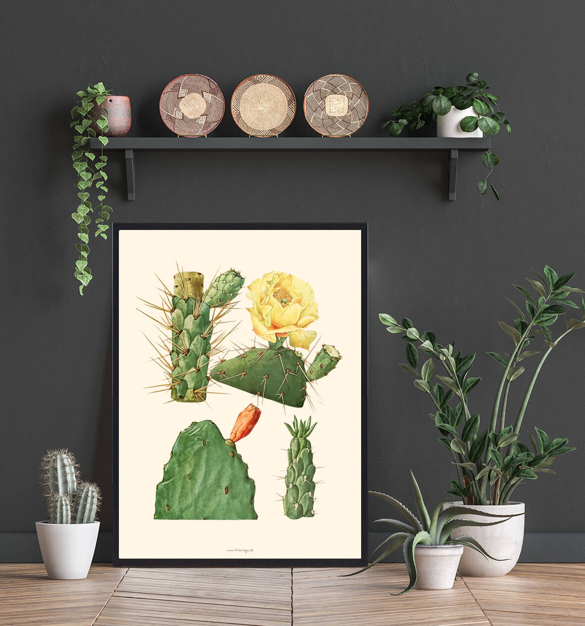 Boligplakat-kaktus-3