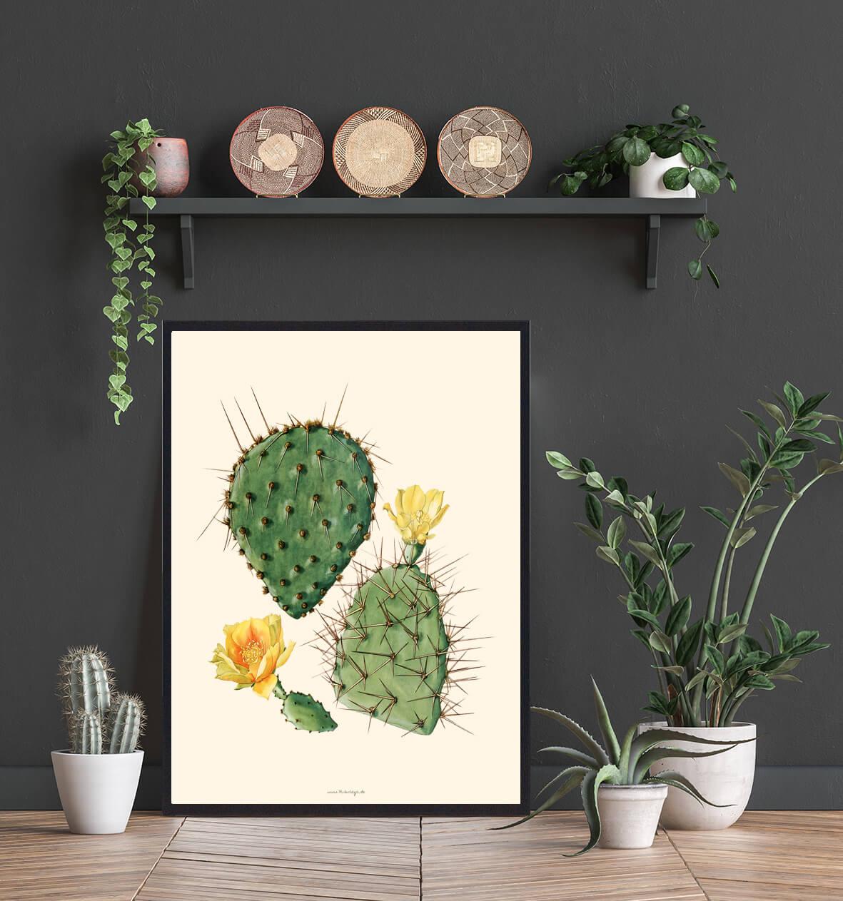 Kaktus-plakat-3