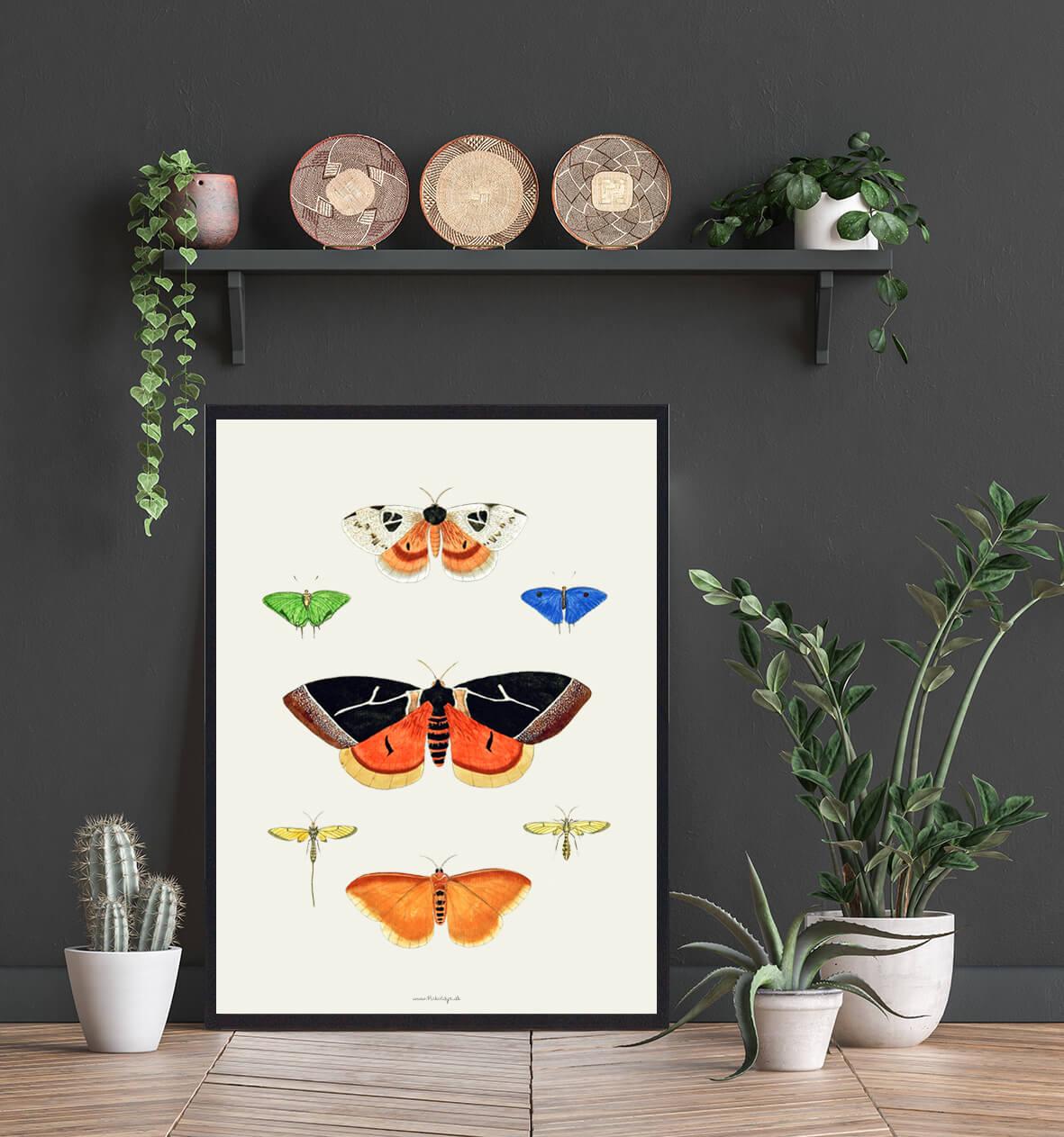 Sommerfugleplakat-indretning-3