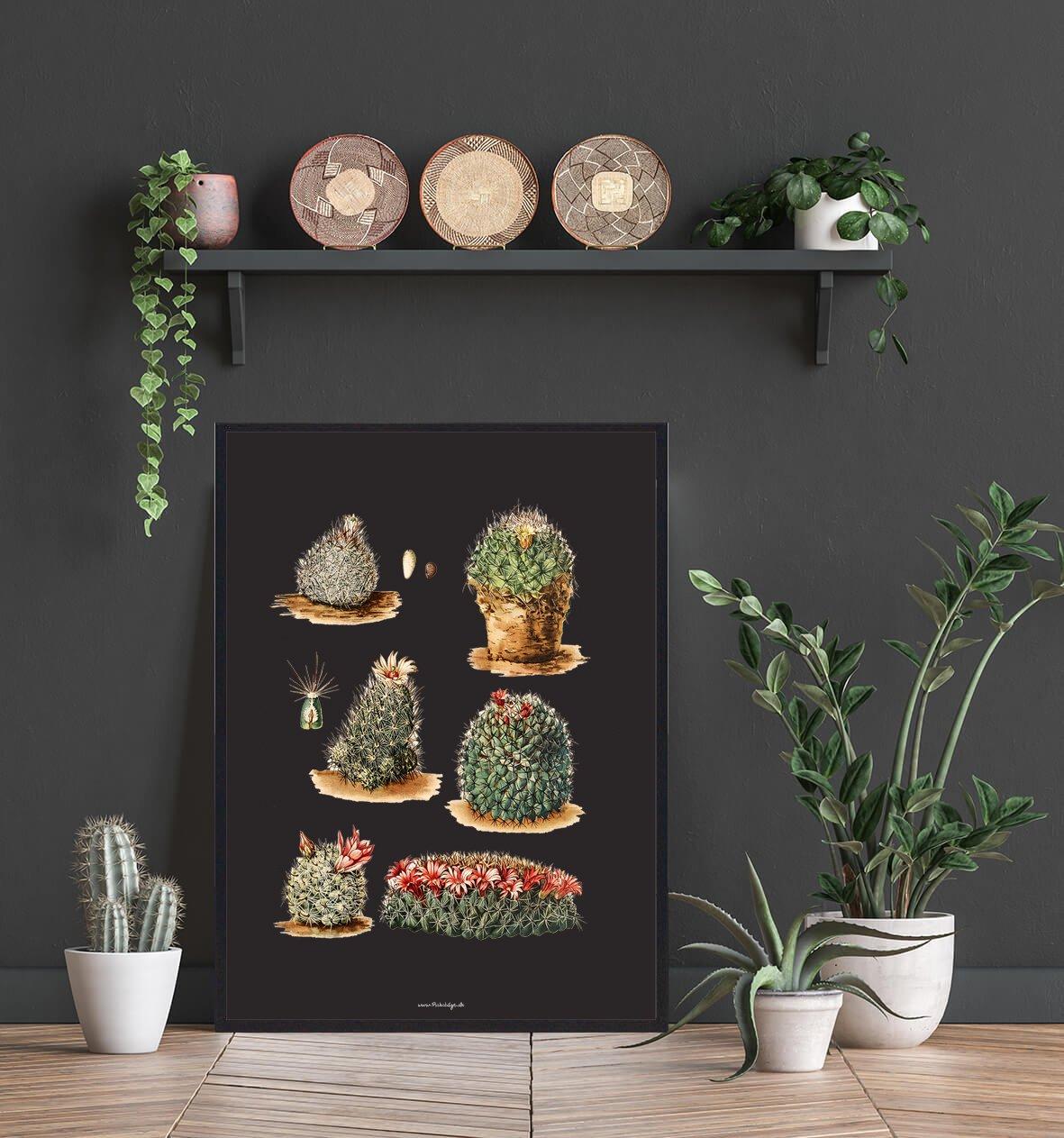 flotte-kaktus-plakat-2