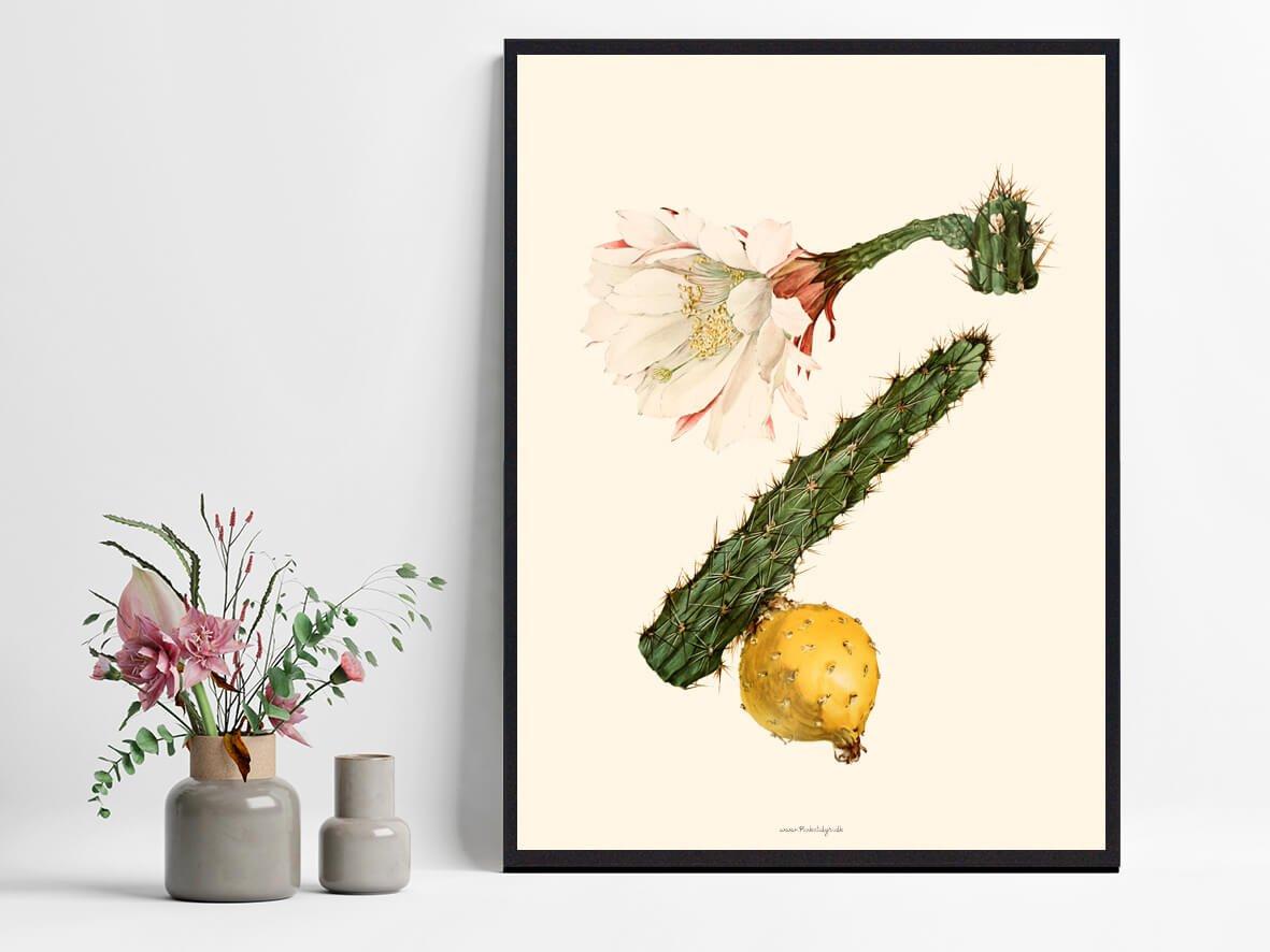 kaktus-billig-plakat-1