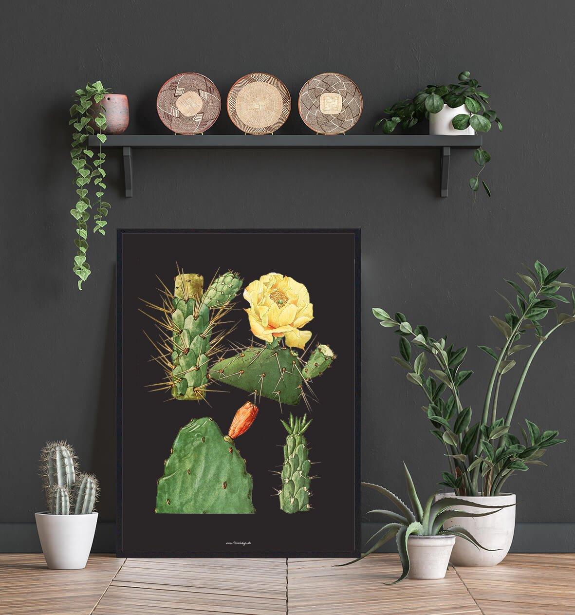 kaktus-bolig-flot-2