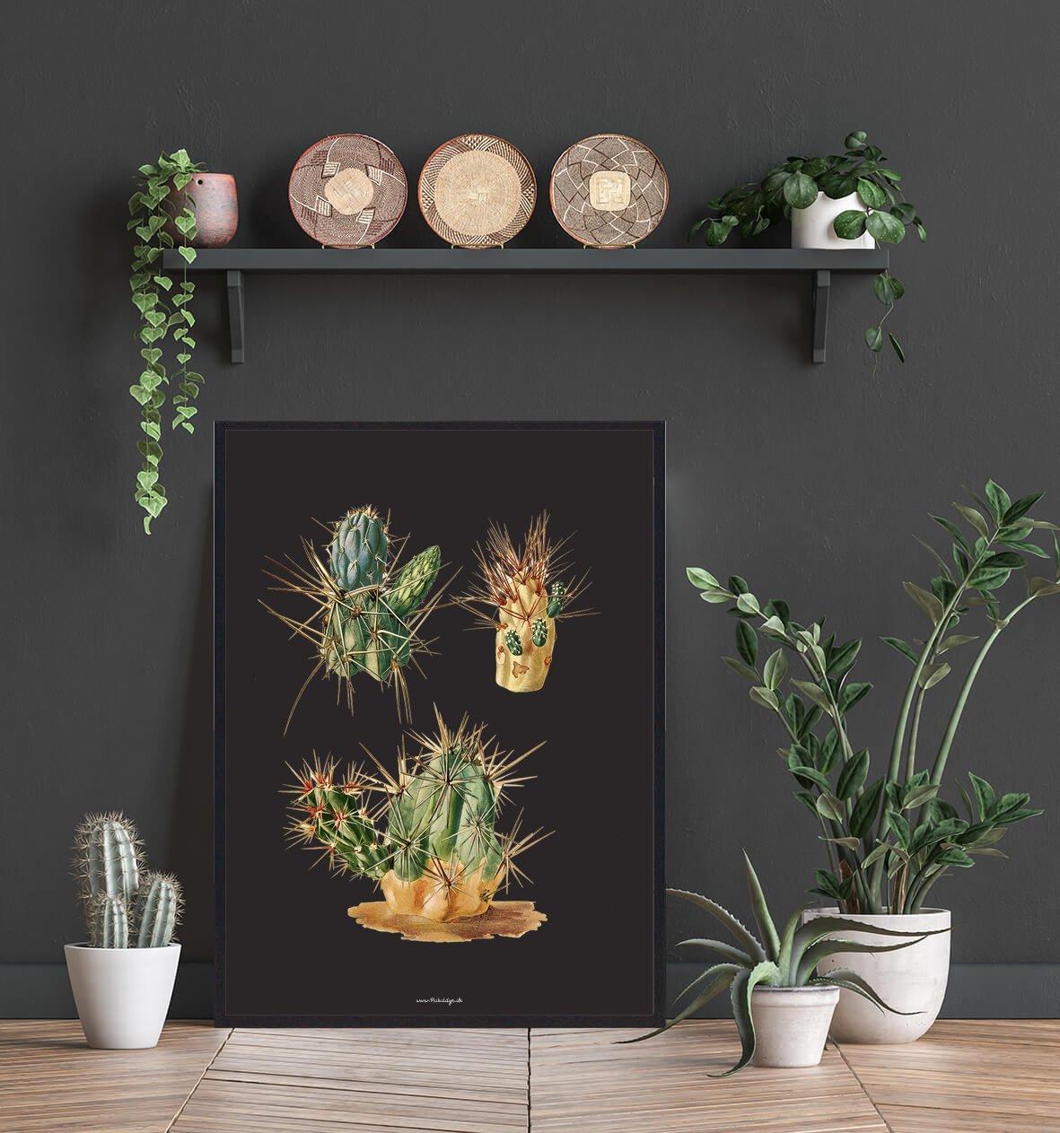kaktus-planter-indretning-2