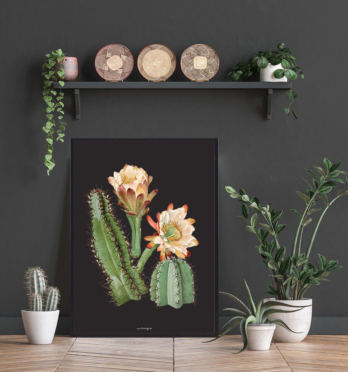 kaktus-stikkende-plante-2