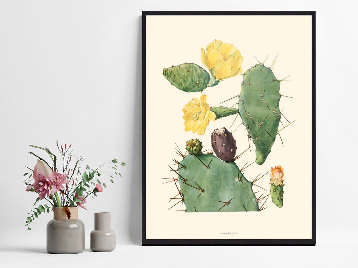 plakat-med-kaktus-1