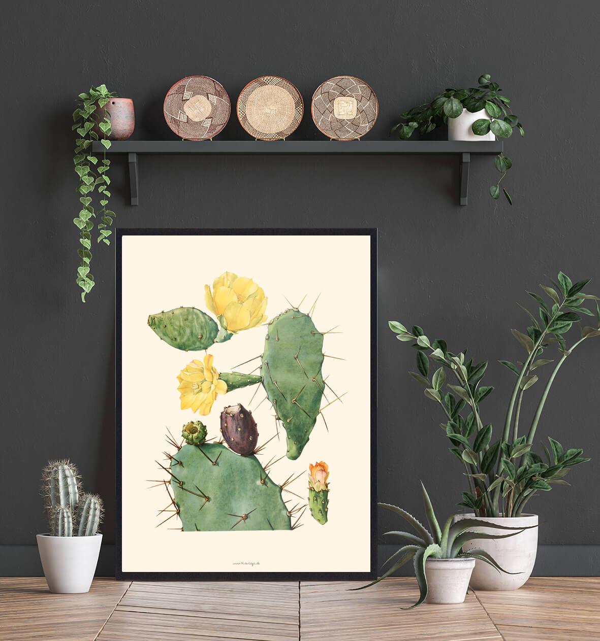 plakat-med-kaktus-3