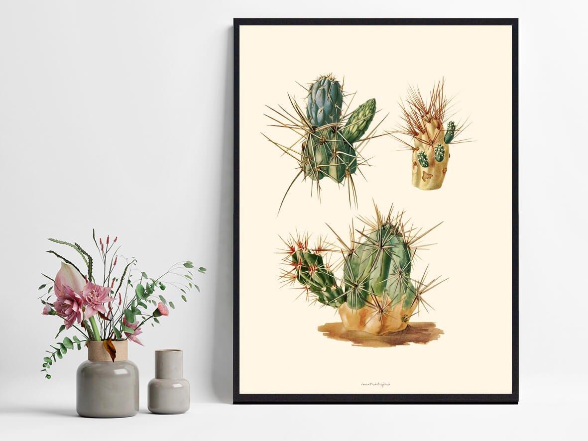 plakate-kaktus-plakat-1