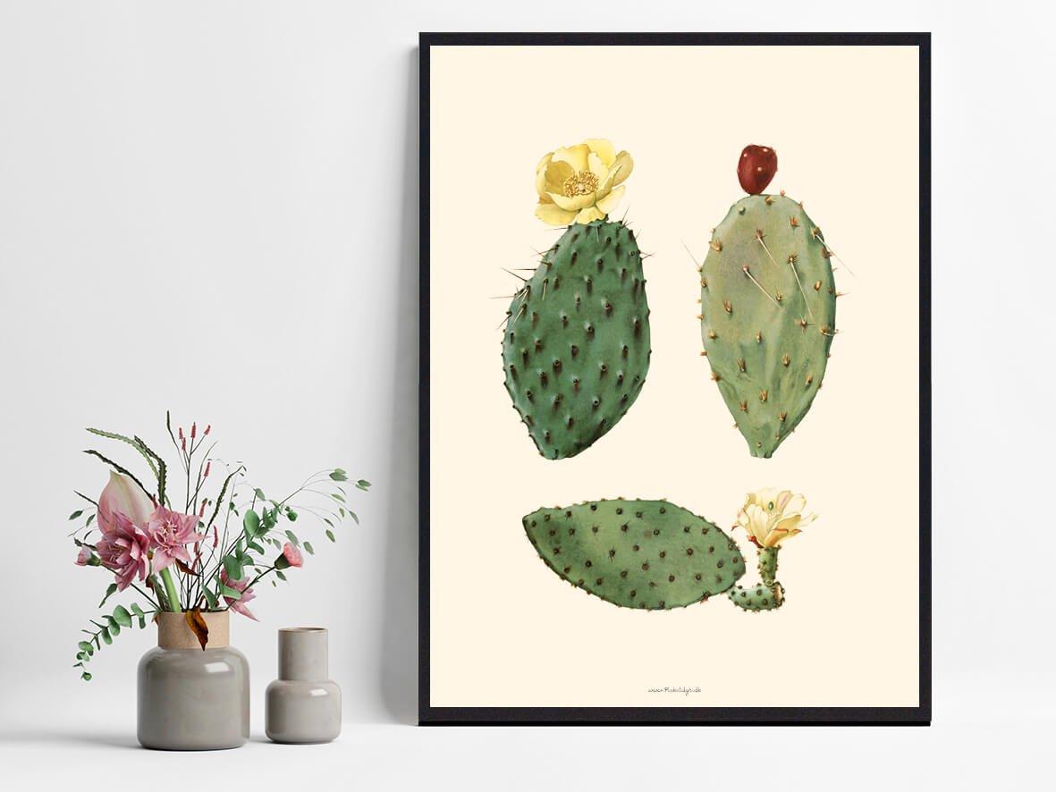 plakate-plakat-kaktus-1