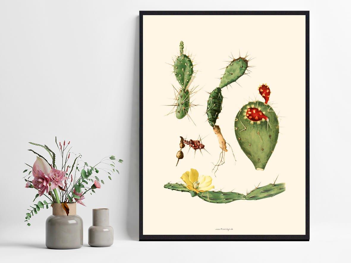 plakateplakat-kaktus-1