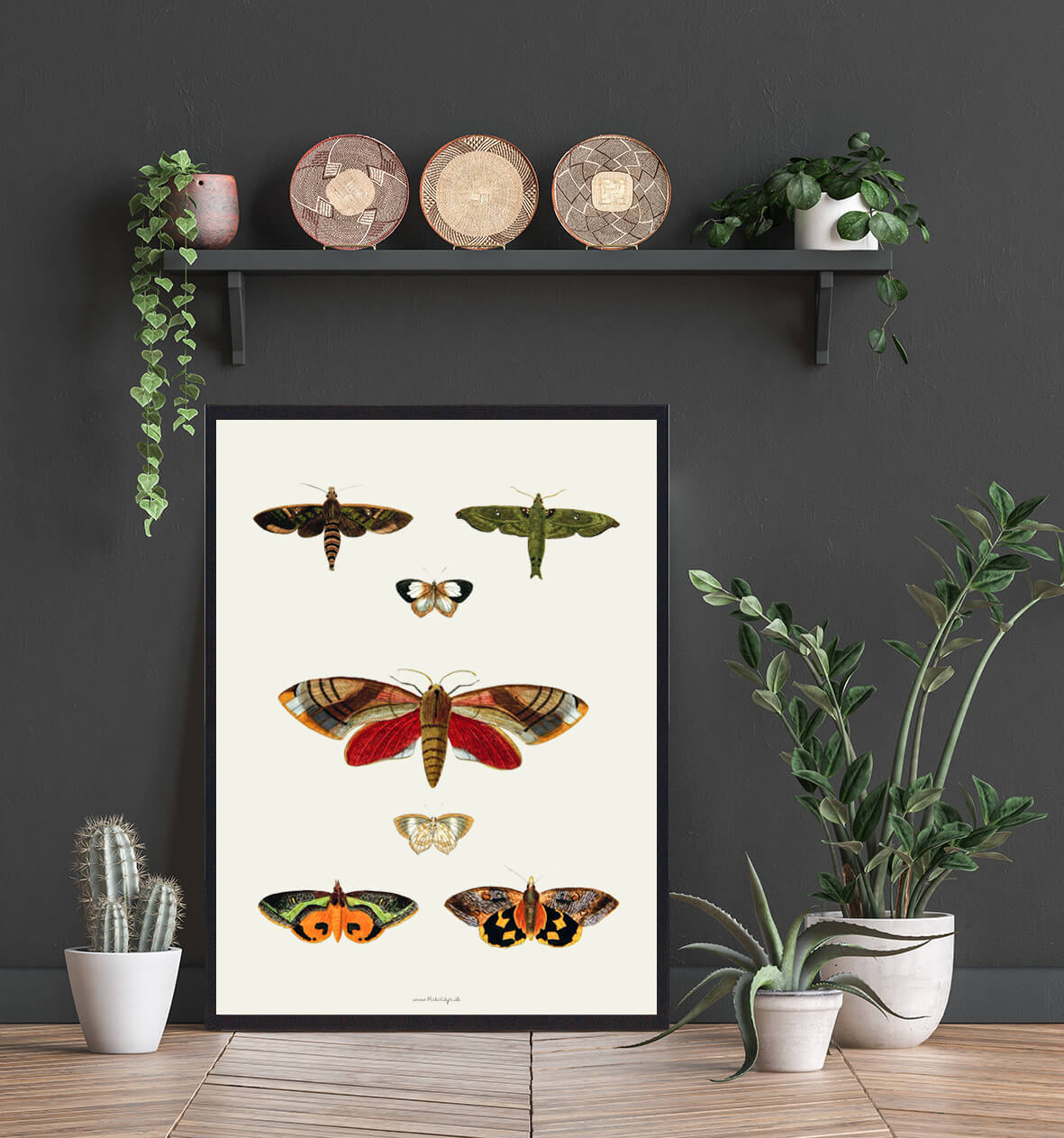 sommerfugle-plakat-indretning-3