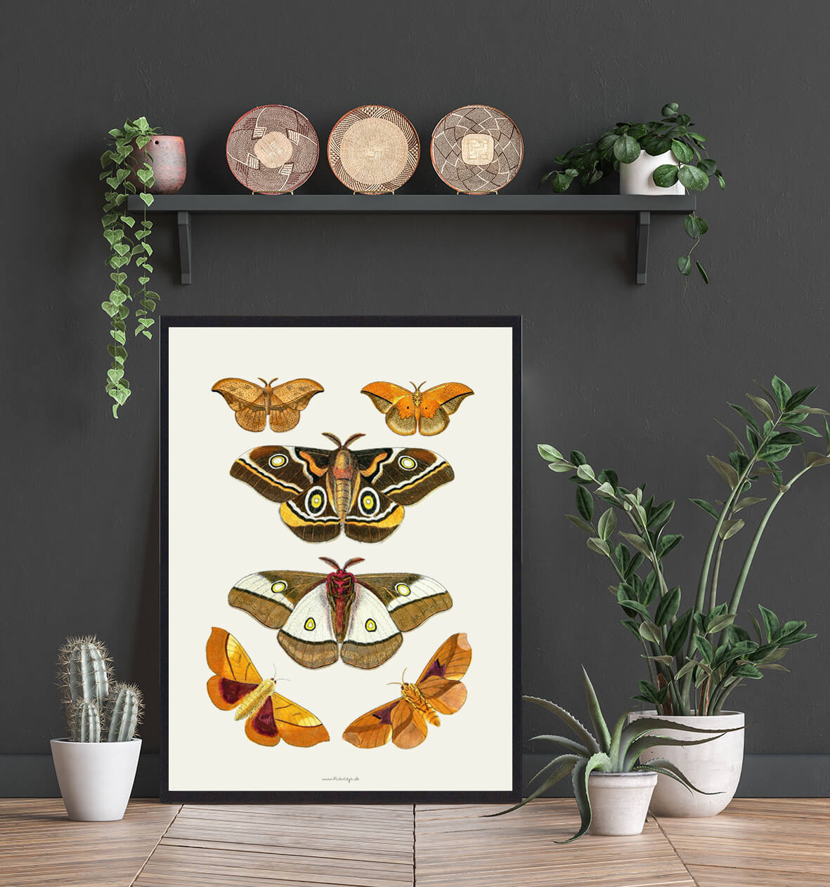 sommerfugle-plakater-boligindretning-3