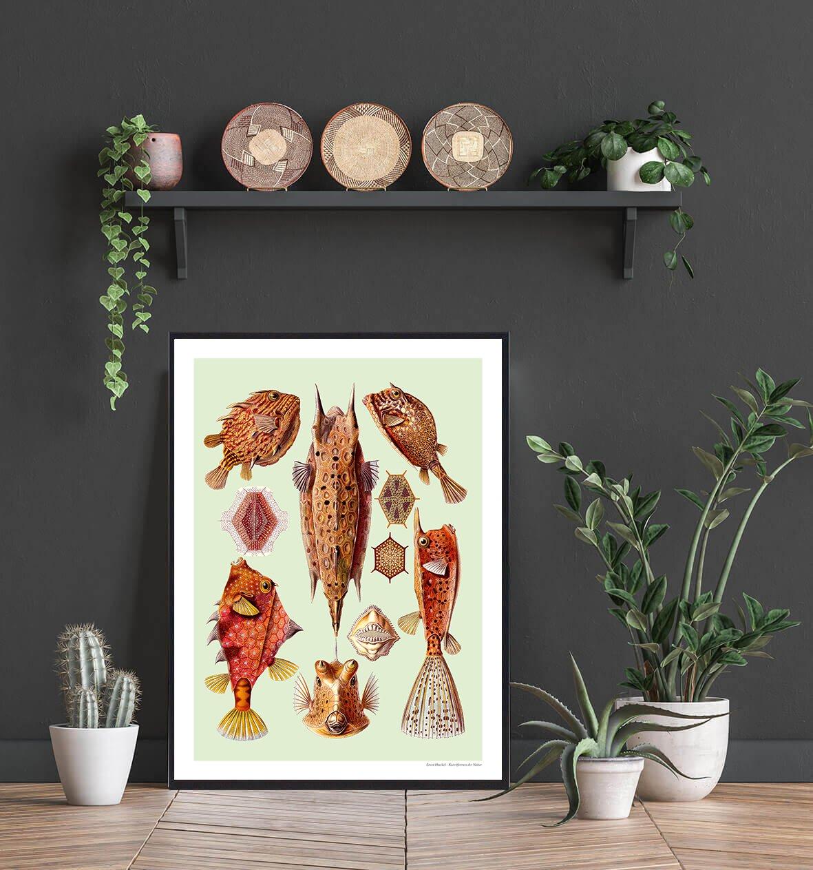 kuffertfisk-natur-plakat-2