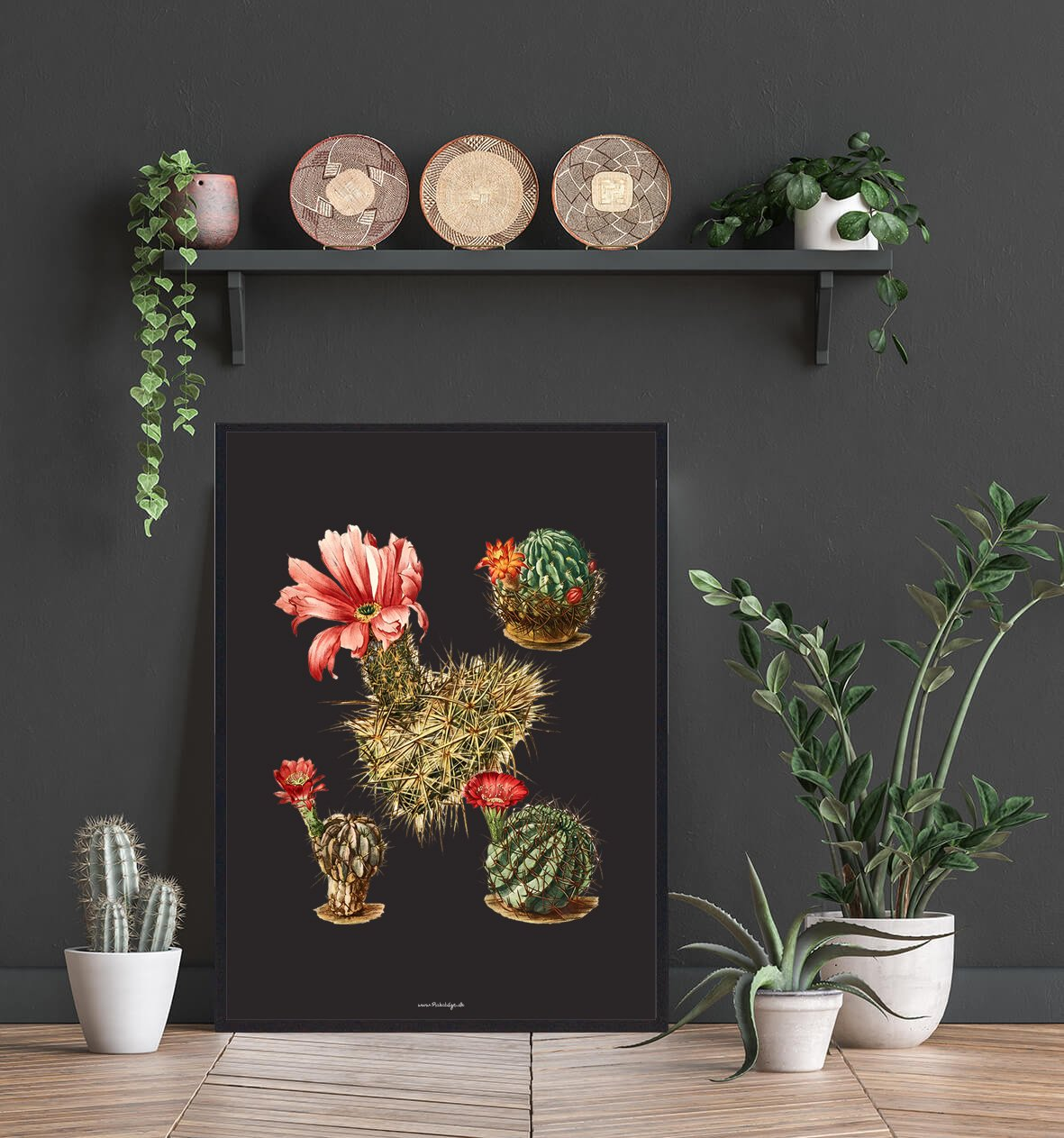 smuk-indretning-kaktus-2