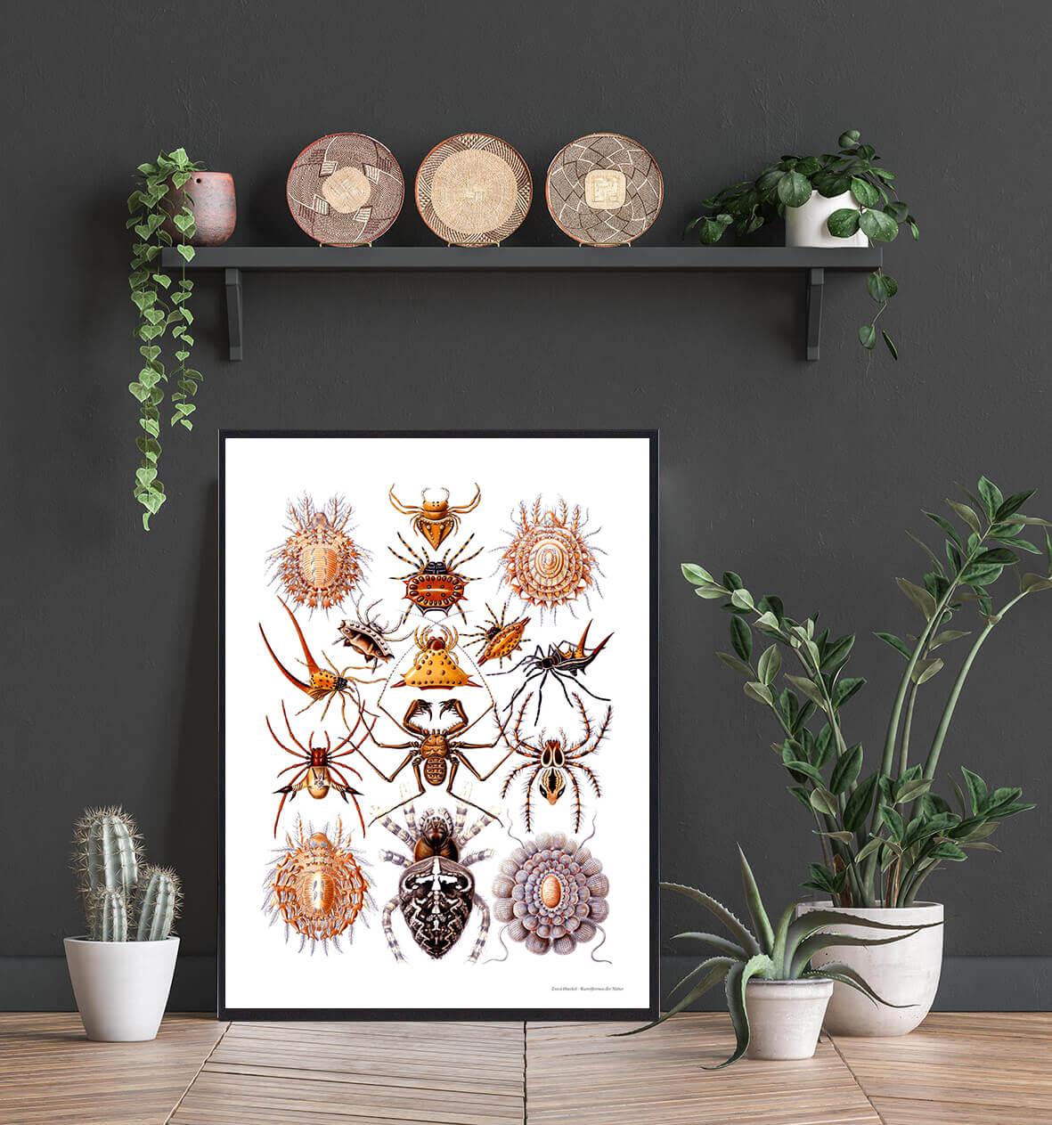 spindler-natur-plakat-2