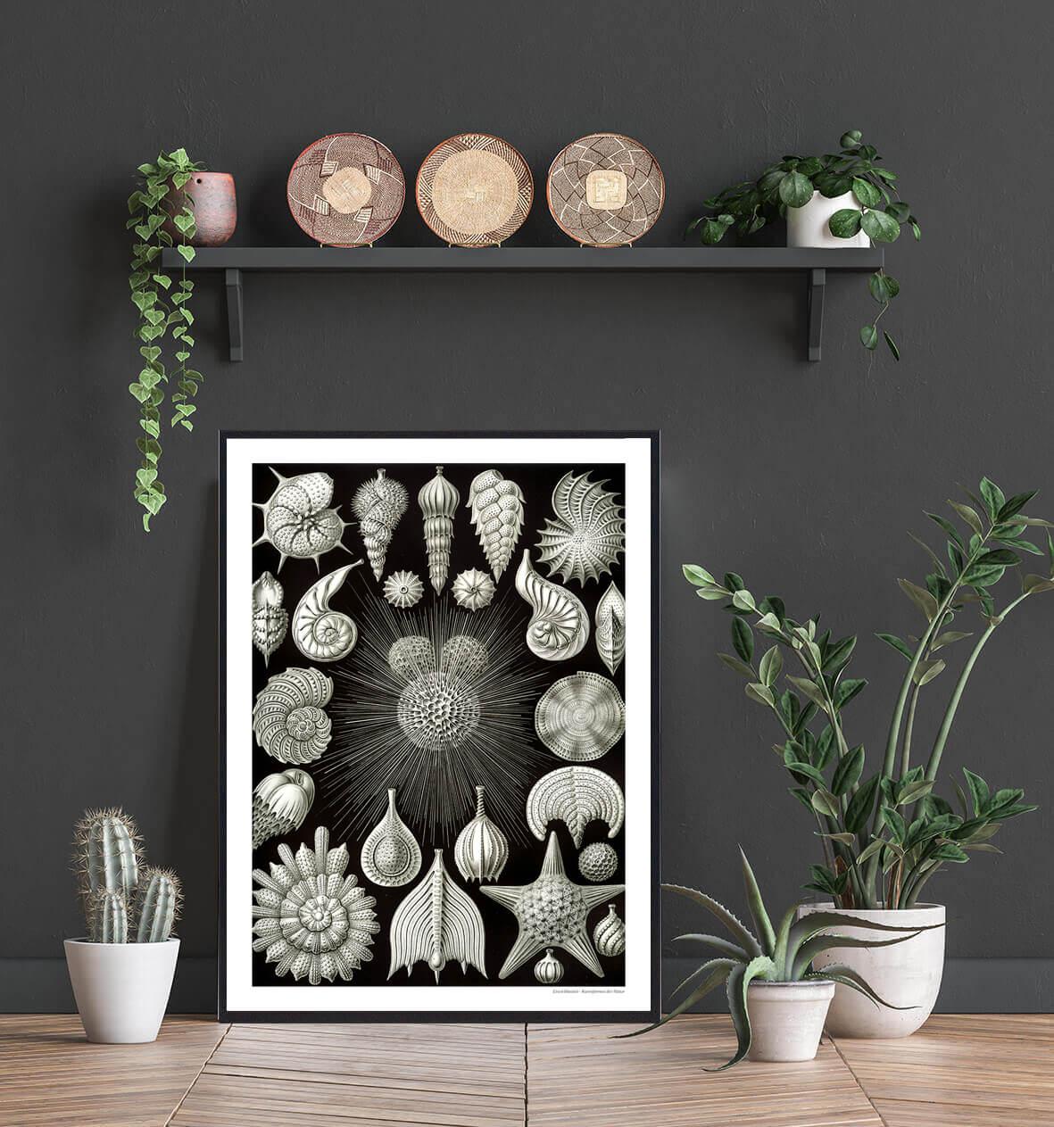 talamophora-kunst-plakat-2