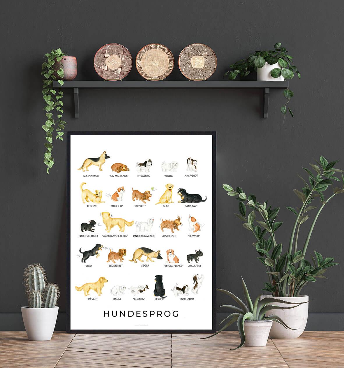Hundesprog-plakat-2