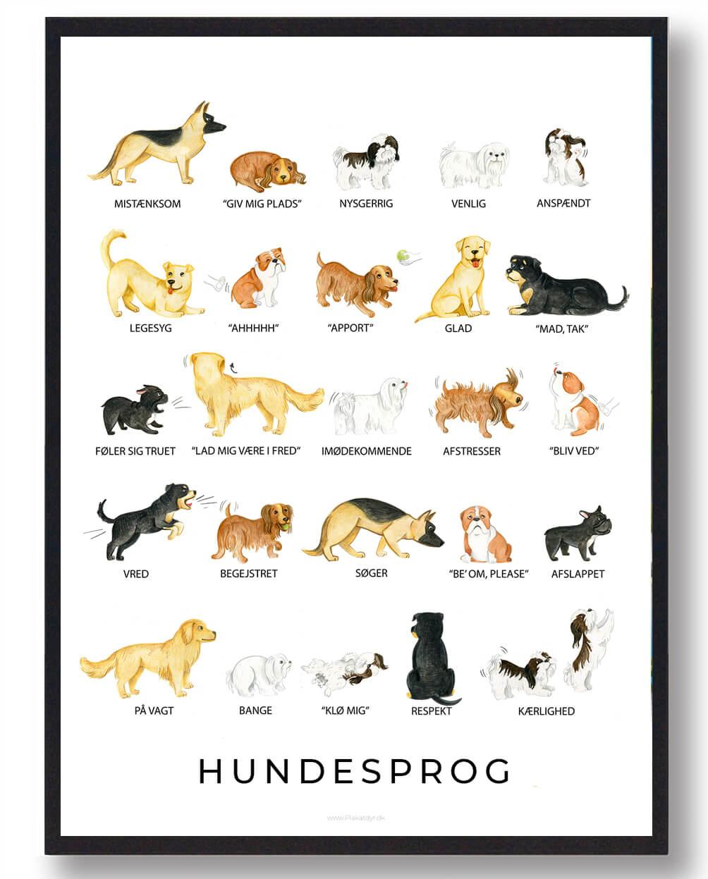 Hundesprog - plakat